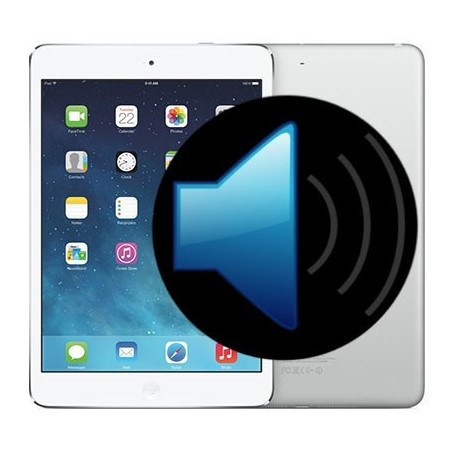 iPad 2 Speaker Repair
